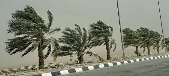 Badai Debu, sumber:www.khaleejtimes.com